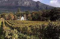 Winelands